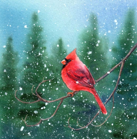 cardinal_3_watercolor_bird_painting_a5495f21175c9745e0d2f7821458af50 (475x480, 199Kb)
