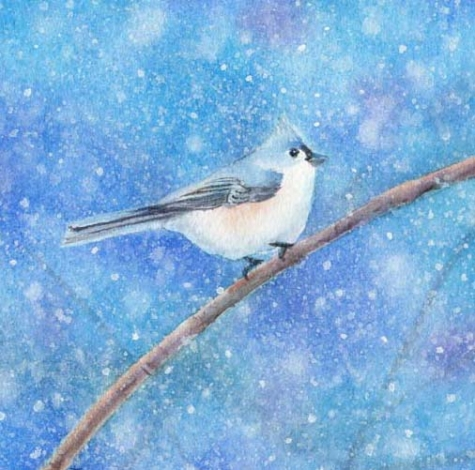 snowbird_watercolor_painting_1_a91fc737552e21b61f804fd53859c27d (475x470, 167Kb)