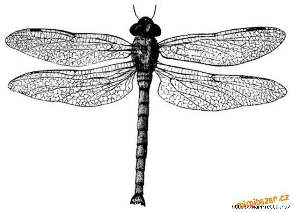 шаблоны бабочек (12) (600x433, 96Kb)