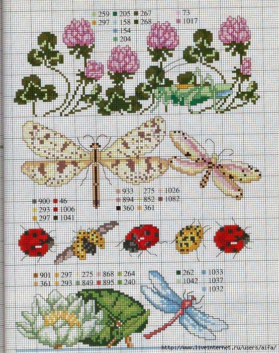 насекомые (555x700, 355Kb)