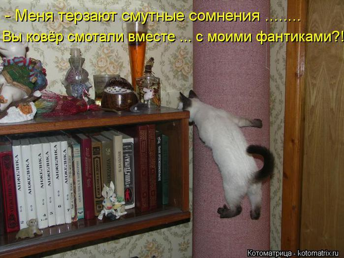 kotomatritsa_Fb (700x524, 71Kb)