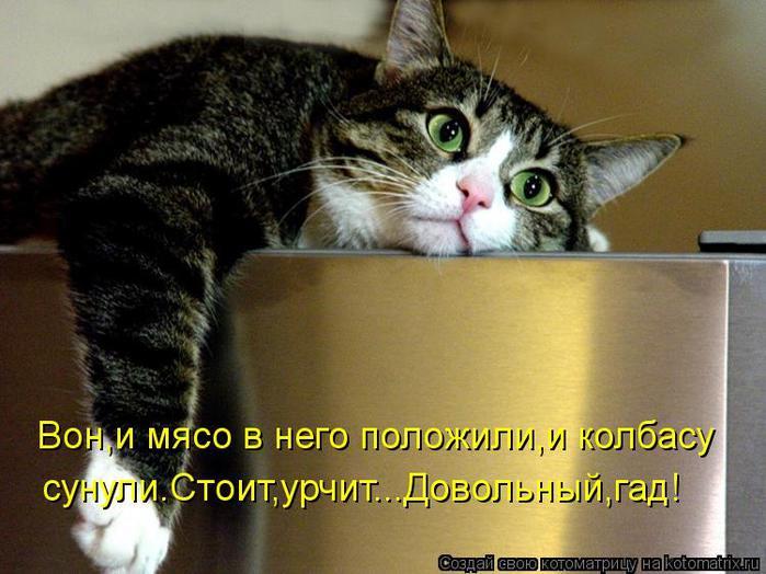 kotomatritsa_YI (700x524, 59Kb)