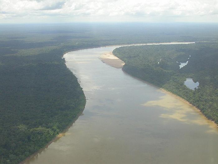 Бразильские джунгли Амазонки (добавление к чемпионату) 3 дн/2 ноч.