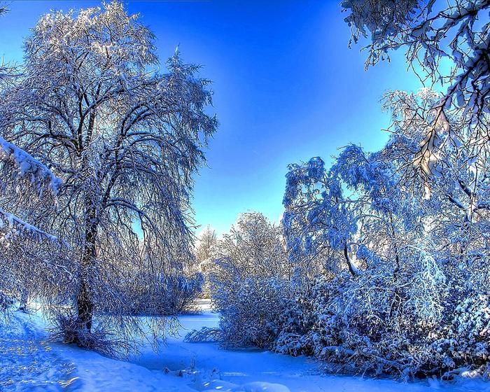 + Зима (700x560, 676Kb)