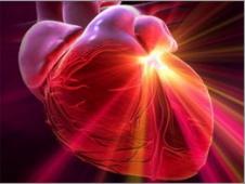 сердце (226x170, 96Kb)