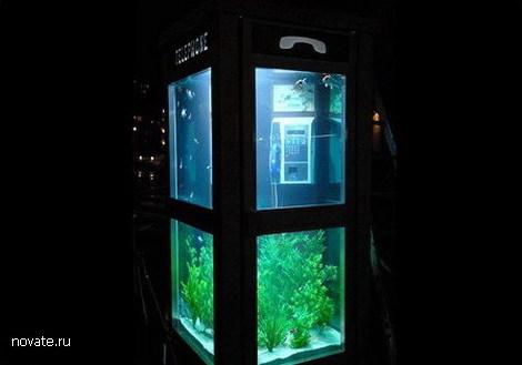 aquarium4 (470x329, 24Kb)