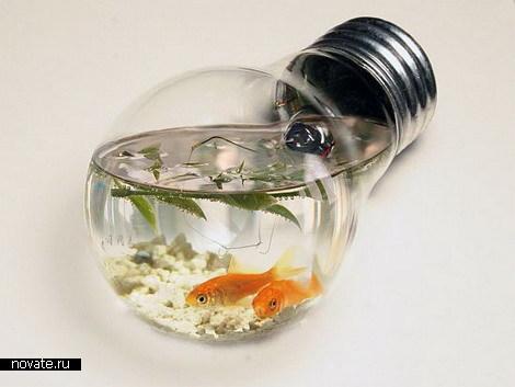 aquarium (470x353, 33Kb)