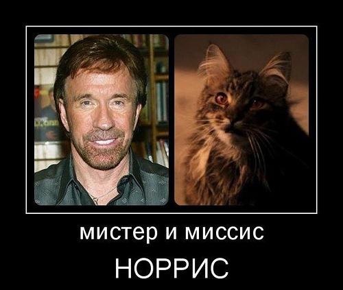 http://img1.liveinternet.ru/images/attach/c/7/98/903/98903685_0_9d2d6_b55164bf_L.jpg