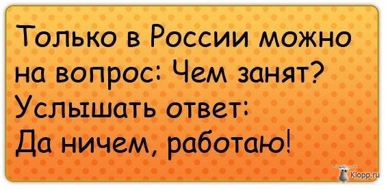 1360588180_e_nsp95rnyi (564x277, 43Kb)