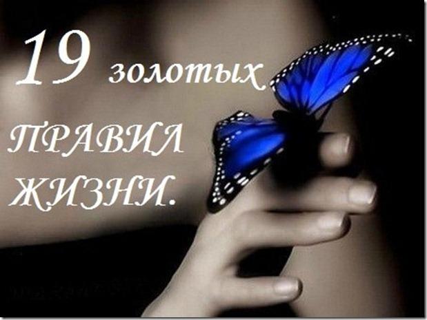 98313209_19_thumb (619x465, 58Kb)