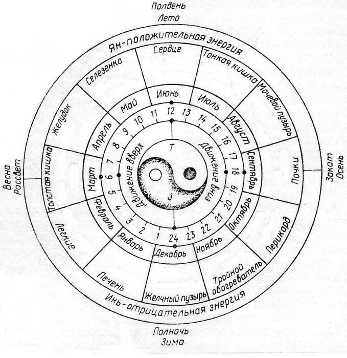 meridiany (679x700, 87Kb)