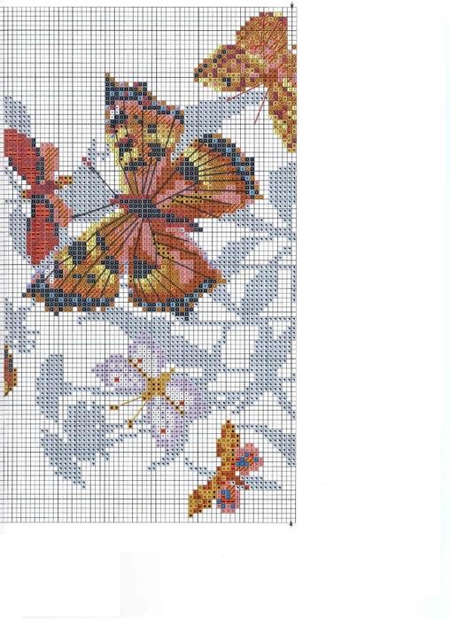 бабочки2 (508x700, 223Kb)