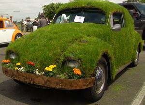car (300x217, 172Kb)