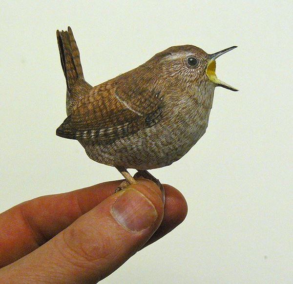bird7 (600x583, 49Kb)
