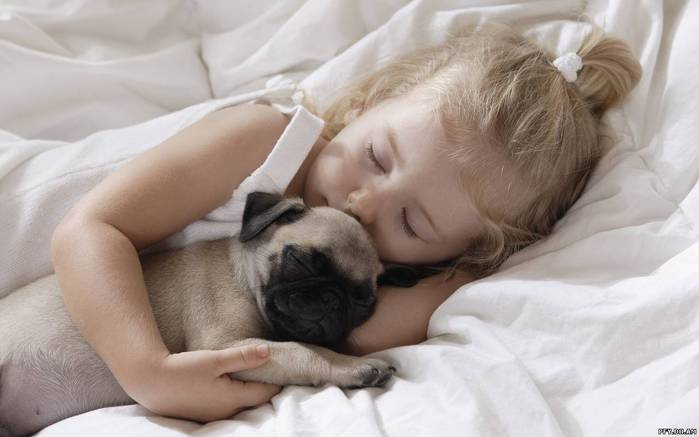 Sleeping, Little girl, childhood, dog, маленькая девочка, children, pet, ch