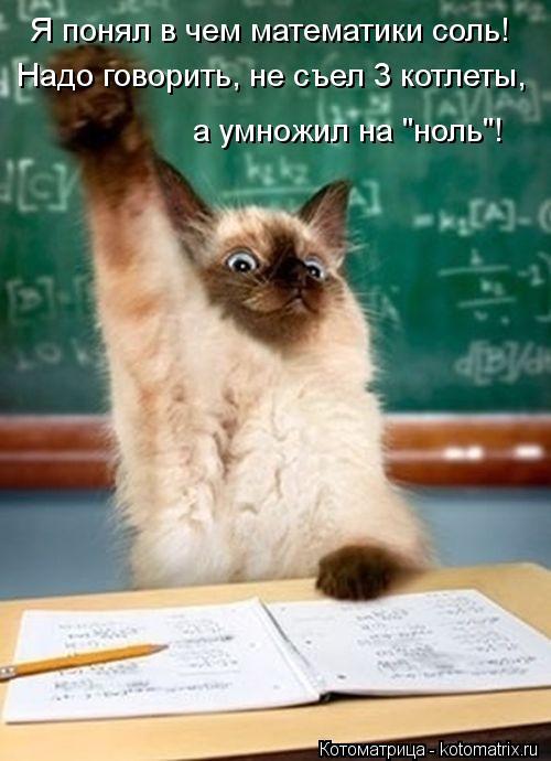 kotomatritsa_ZN (500x690, 50Kb)