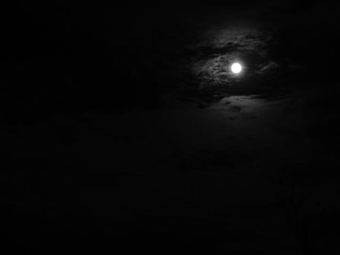 Луна и облака/1415502_DSC00017_kopiya (700x525, 53Kb)