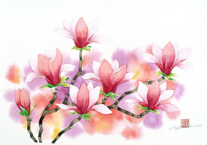 цветочные акварели Ибараги Йосиюки 8 (700x490, 87Kb)