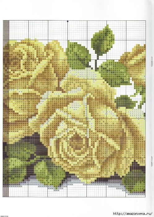 вышивка розы (6) (497x700,