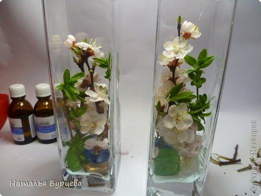 Живые цветы в глицерине своими руками
