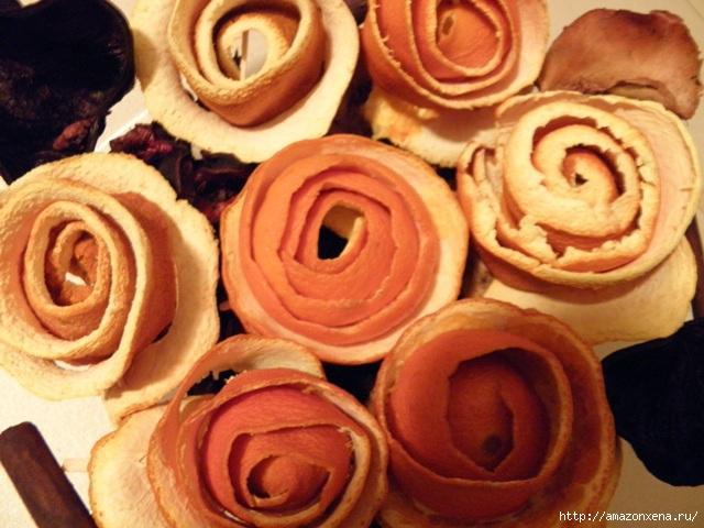 апельсиновые розы (12) (640x480, 153Kb)