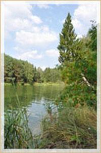 У озера (200x302, 35Kb)