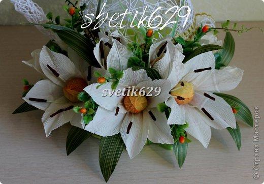 img_1069 (520x362, 45Kb)