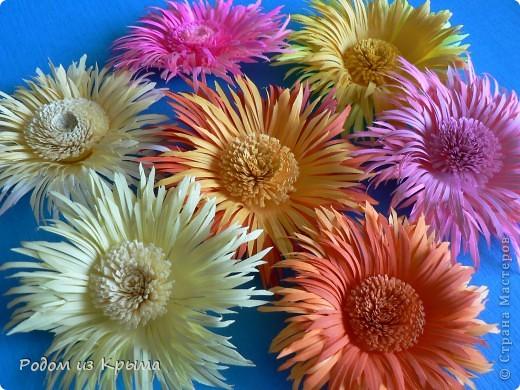 Хризантемы из цветной бумаги.