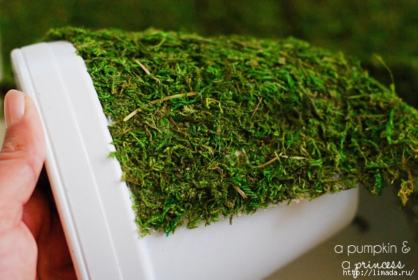Moss_Planter_Tutorial (600x402, 184Kb)