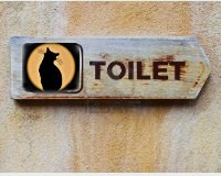 4163023_tualetkota (200x160, 20Kb)