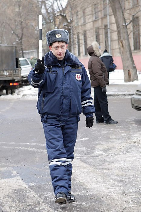 4493285_Kak_vesti_sebya_esli_Vas_ostanovil_inspektor_GIBDD (466x700, 87Kb)
