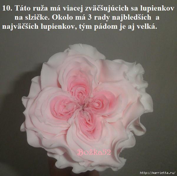 розы из сахарной мастики (10) (601x600, 115Kb)