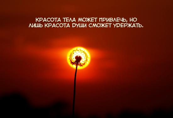 ___000_111_�� (550x378, 173Kb)