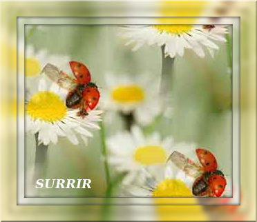 4674007_tuxpi_com_1367379093 (372x322, 55Kb)