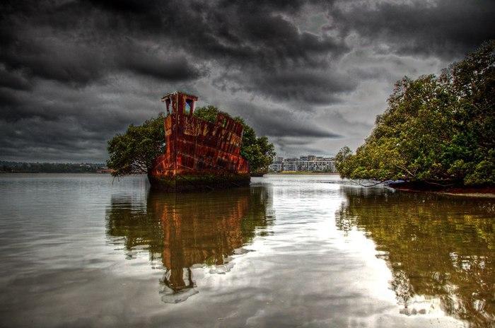 корабль-лес SS Ayrfield у берегов австралии фото 1 (700x464, 74Kb)