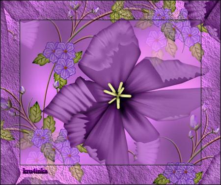 Фиолетовая-скр (450x376, 348Kb)