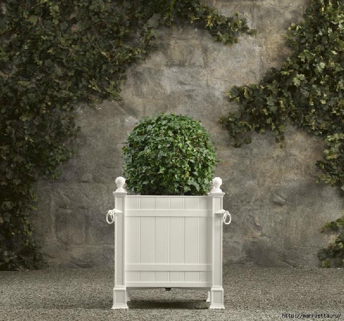 Плющ (Хедера хеликс). Потрясающие композиции для украшения дома и сада (63) (700x652, 317Kb)
