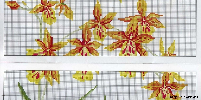 Floral 12 (700x348, 238Kb)