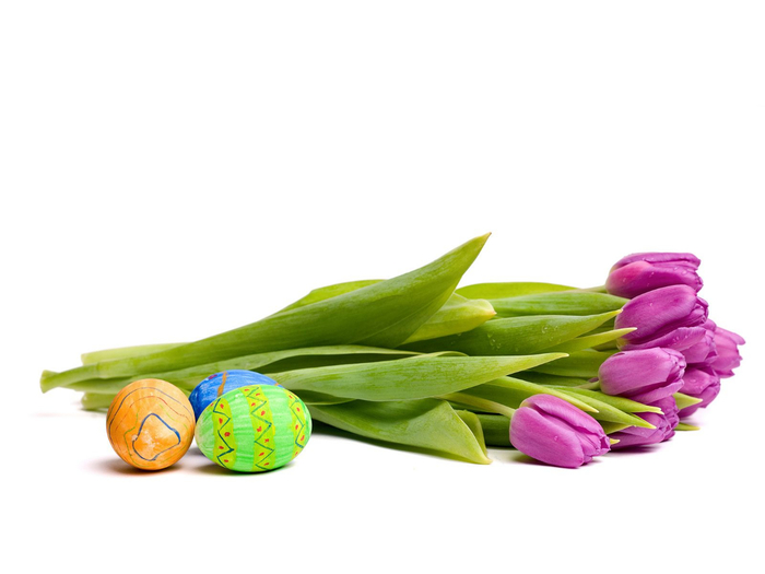 Easter Eggs and Tulips (700x525, 148Kb)