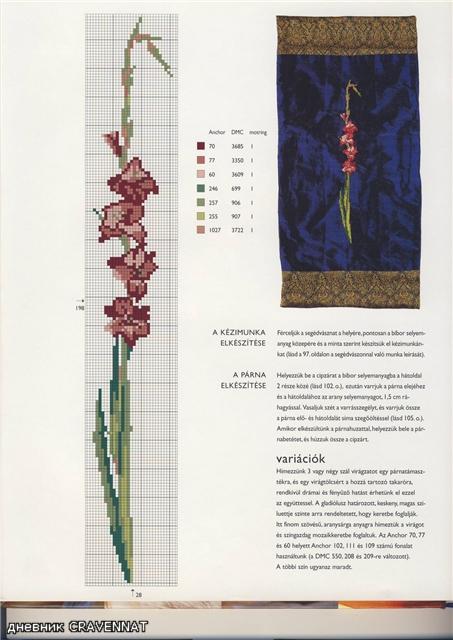 вышивка гладиолус (1) (453x640