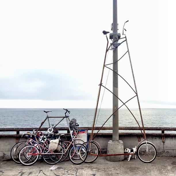 velosiped-vusotoj-v-dva-etazha-10 (612x612, 83Kb)