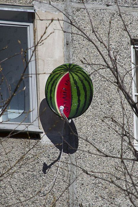 sattelite_watermelon_07 (466x700, 105Kb)