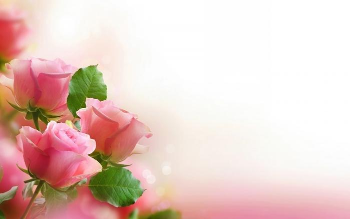 Картинки цветов с юбилеем 4