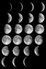 images (183x275, 7Kb)