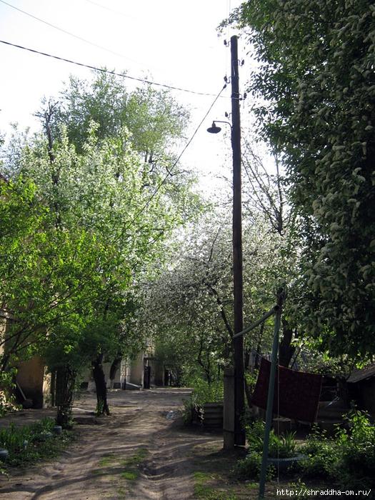 Воронеж, май 2013 года (1) (525x700, 409Kb)