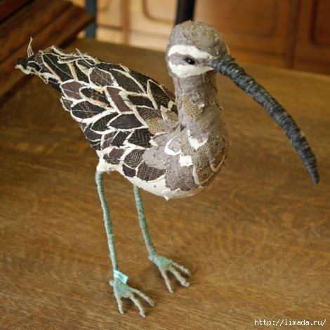 Large-longnosebird (470x470, 178Kb)