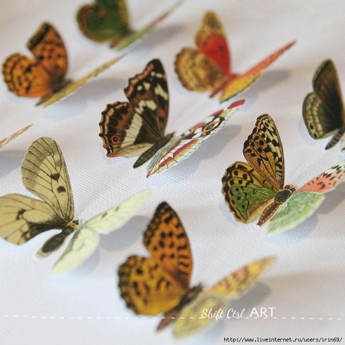 Vegan-butterfly-framed-art-paper-craft-8 (700x700, 242Kb)