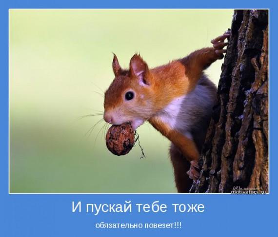 1367925246_1367808062_motivatory-28 (570x485, 51Kb)