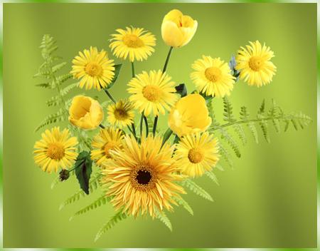 Букетик-желтых-цветов (450x352, 222Kb)