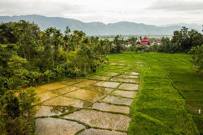 индонезия фото 13 (700x466, 298Kb)